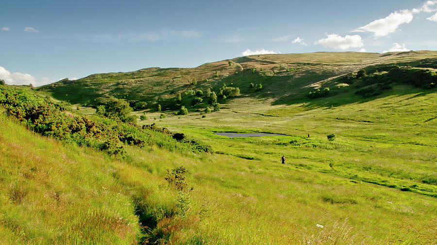 Edinburgh Photograph - Huttons Bog View. Holyrood Park. by Elena Perelman