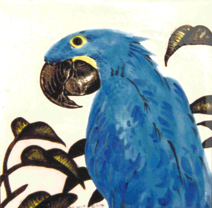 Hyacinth Macaw Painting - Hyacinth Macaw by Dy Witt