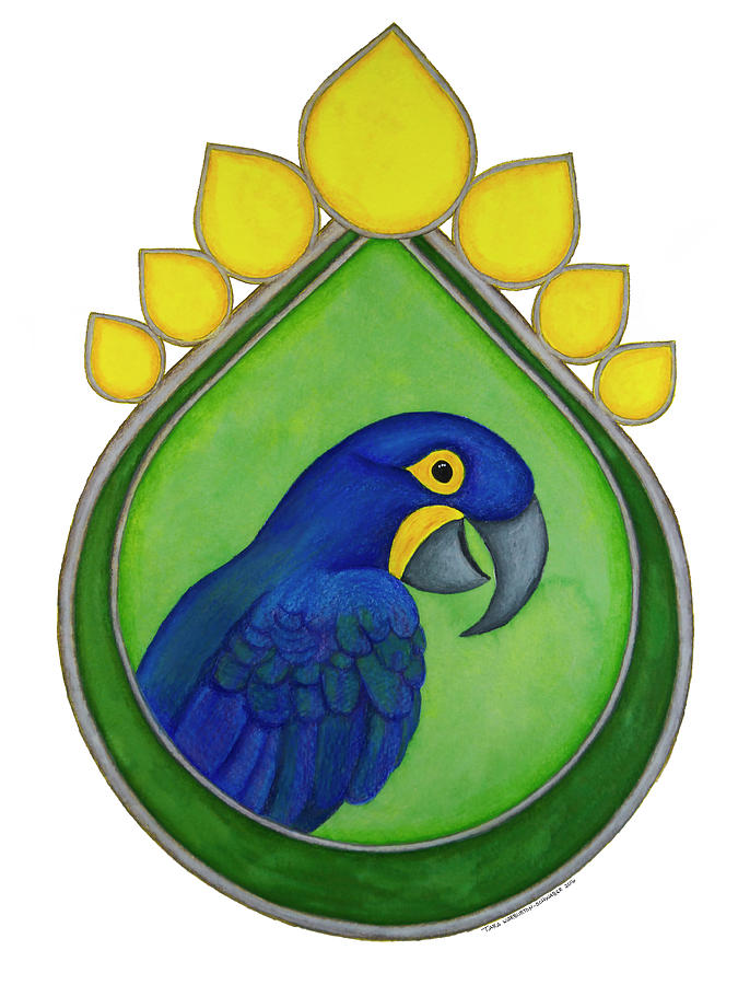 Macaw Drawing - Hyacinth Macaw by Tara Warburton-Schwaber