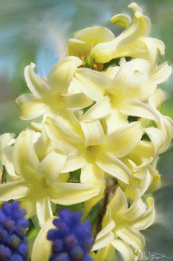Botanical Photograph - Hyacinth Painting by Garvin Hunter