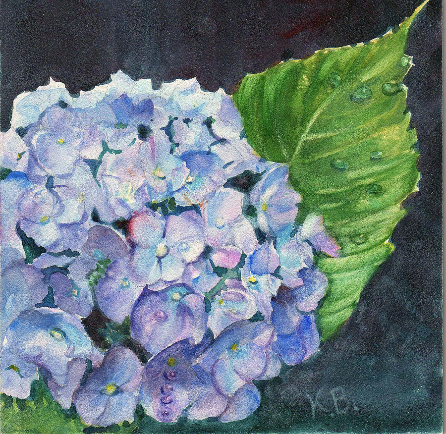 Hydrangea And Water Droplet Painting By Katherine Berlin