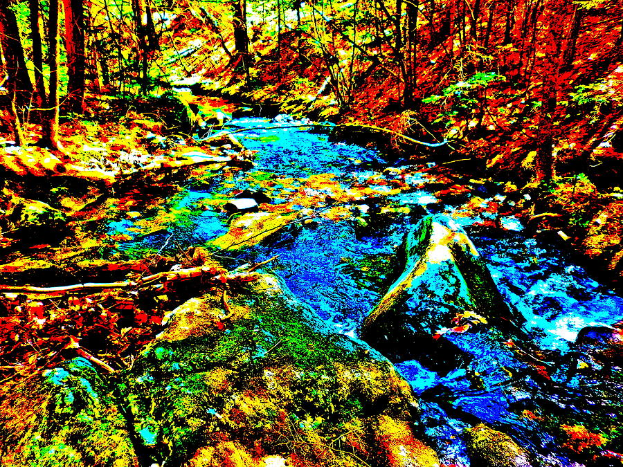 Landscape Photograph - Hyper Childs Brook Z 5 by George Ramos