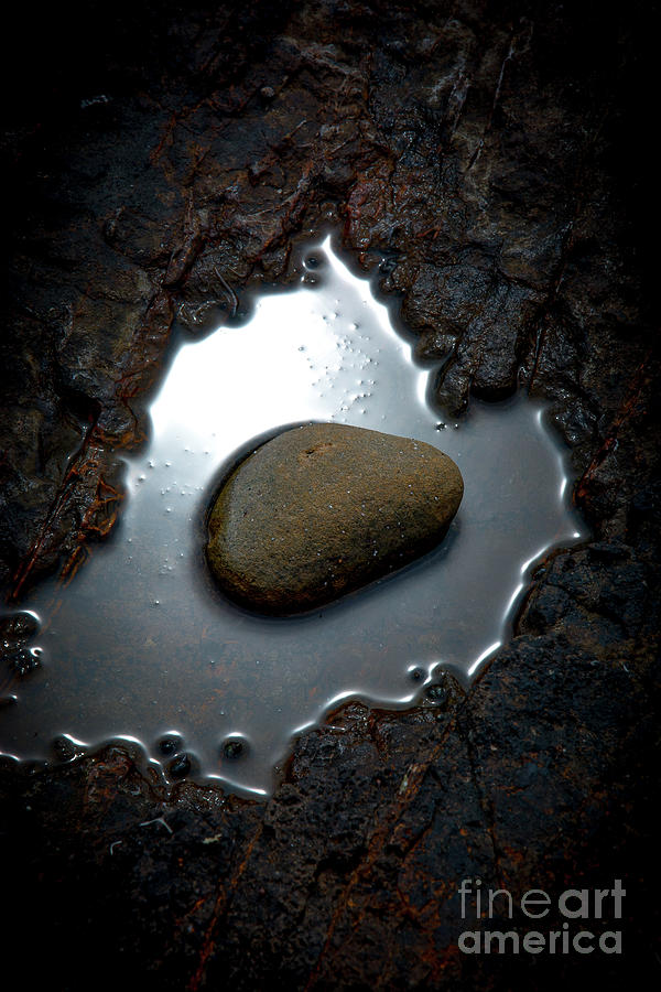 I am a rock by David Hillier