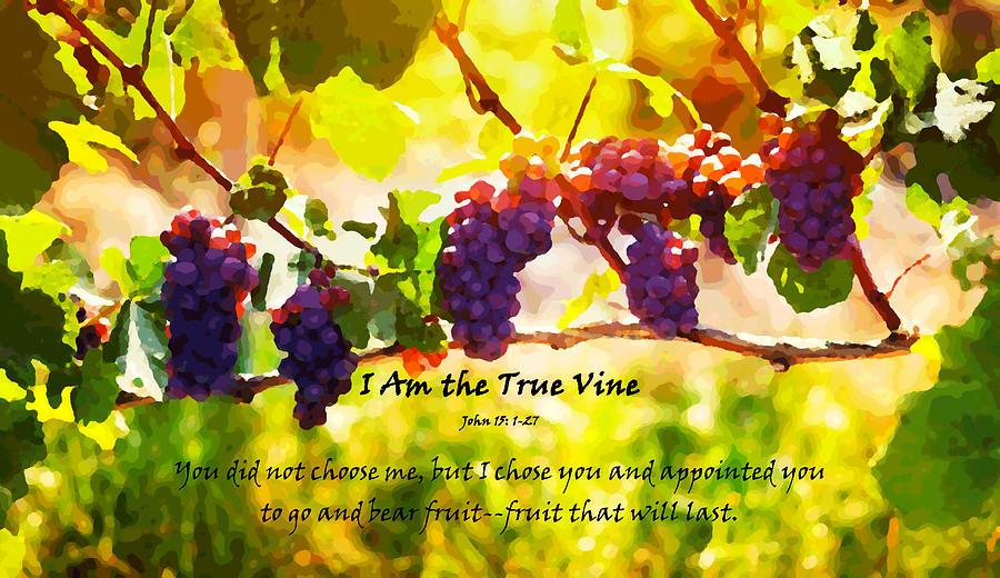 I Am The True Vine Digital Art By Alexis Moreno Plariza