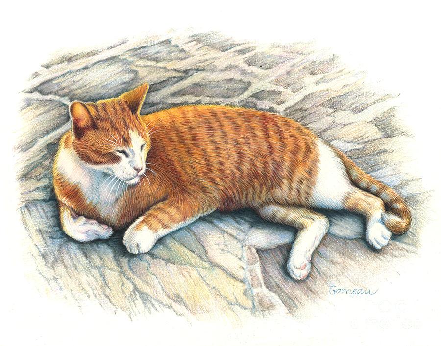 Tiger Drawing - I Am Tiger by Catherine Garneau
