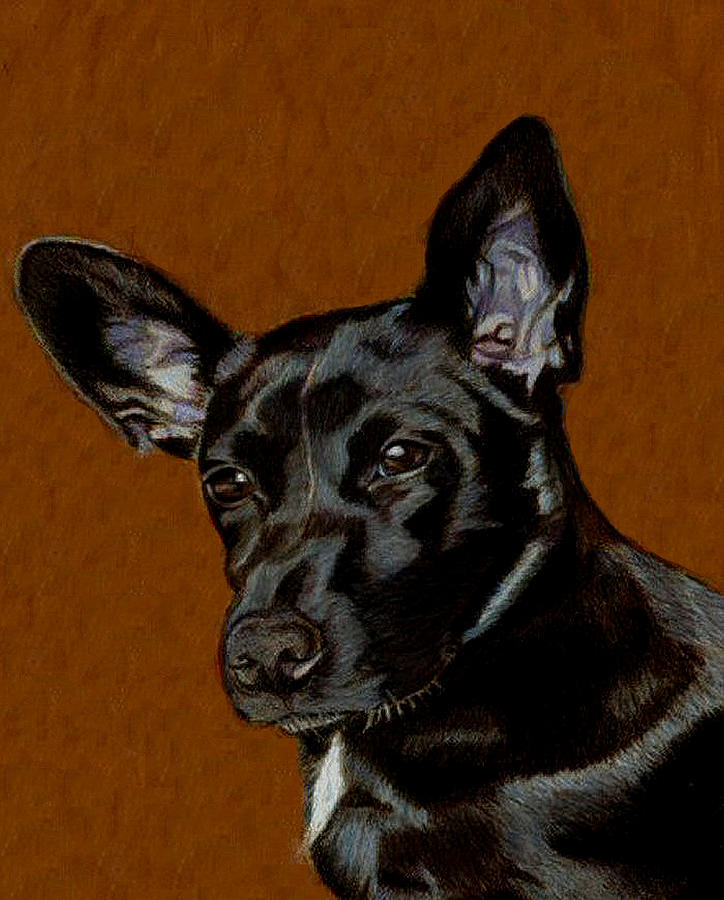 Dog Painting - I Hear Ya - Dog Painting by Patricia Barmatz