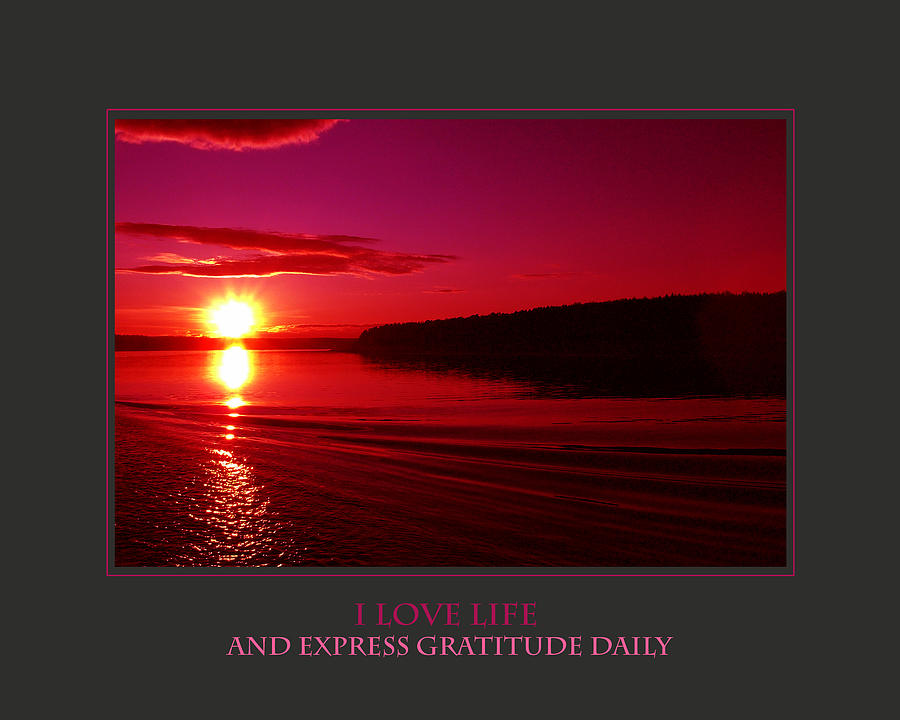 Motivational Photograph - I Love Life And Express Gratitude Daily by Donna Corless