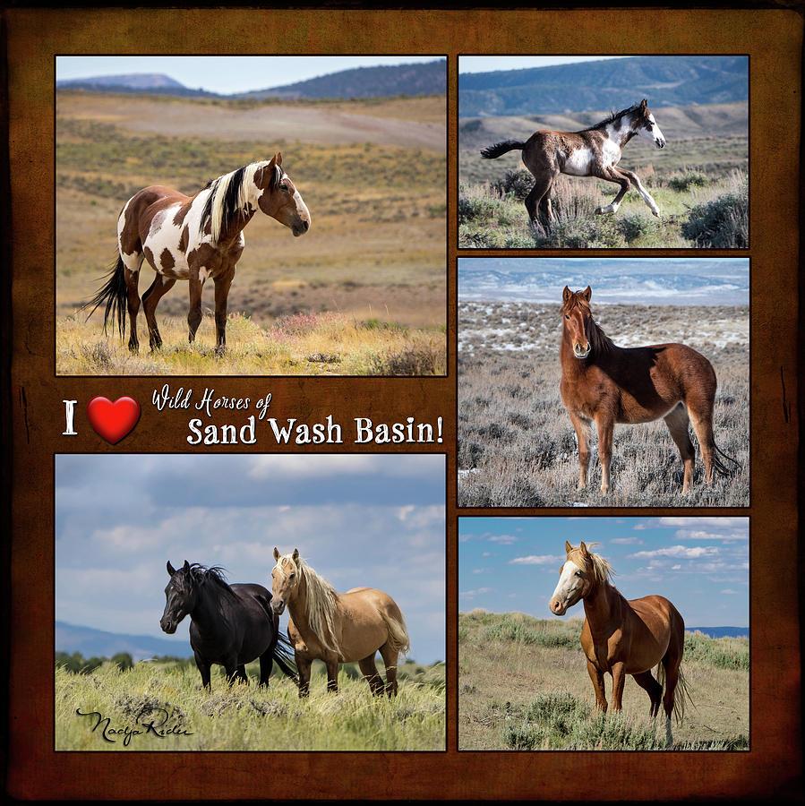 I Love Wild Horses of Sand Wash Basin by Nadja Rider