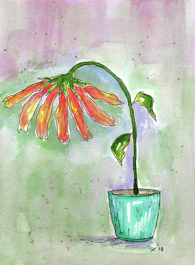 Watercolor And Ink Painting - I Need A Bigger Pot by Susan Campbell