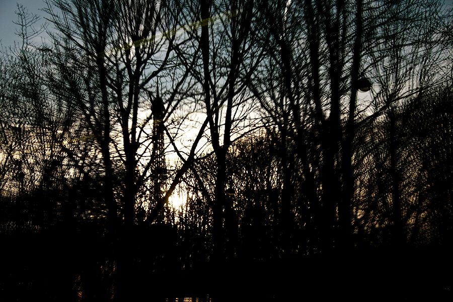 Reflection Photograph - I See Reflections by Anita Krisko