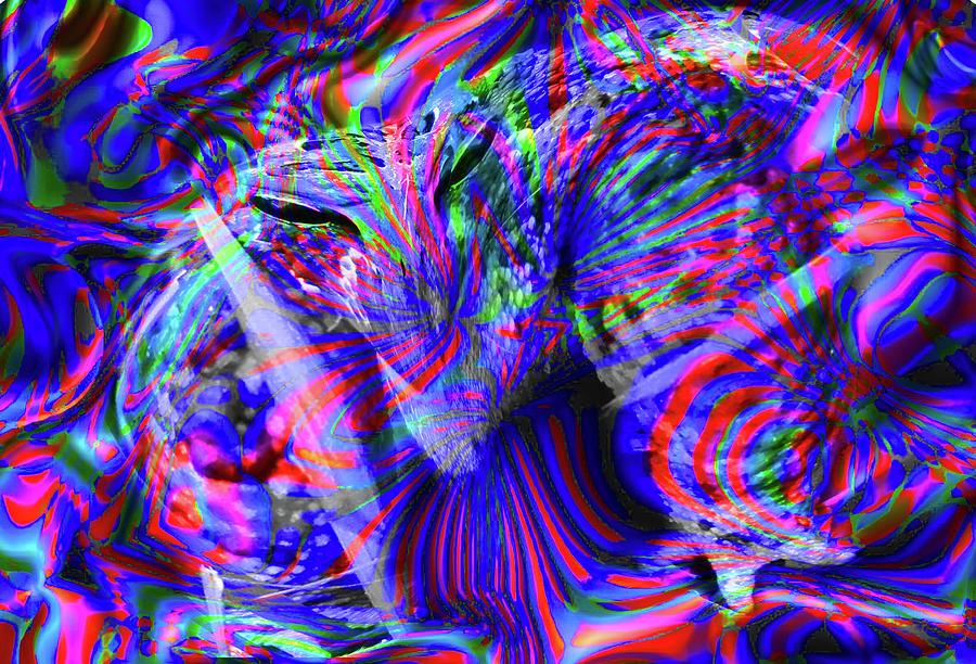 I Toad You I Was Coming Digital Art