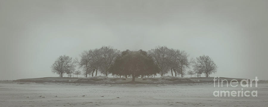Landscape Photograph - I Will Walk You Home by Dana DiPasquale