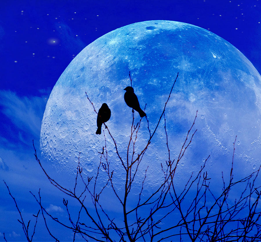 Silhouette Photograph - I Would Give You The Moon by John Rivera