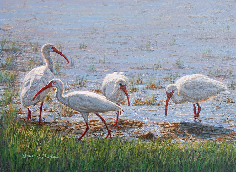 Wildlife Painting - Ibis Excursion by Bruce Dumas