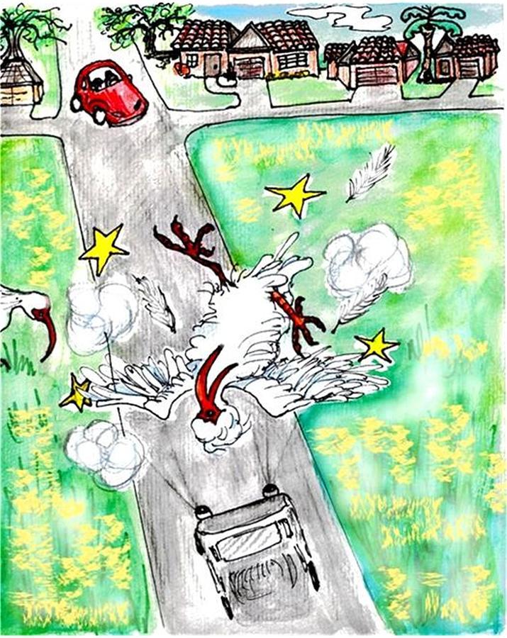 Ibis Drawing - Ibis Sees Stars by Carol Allen Anfinsen