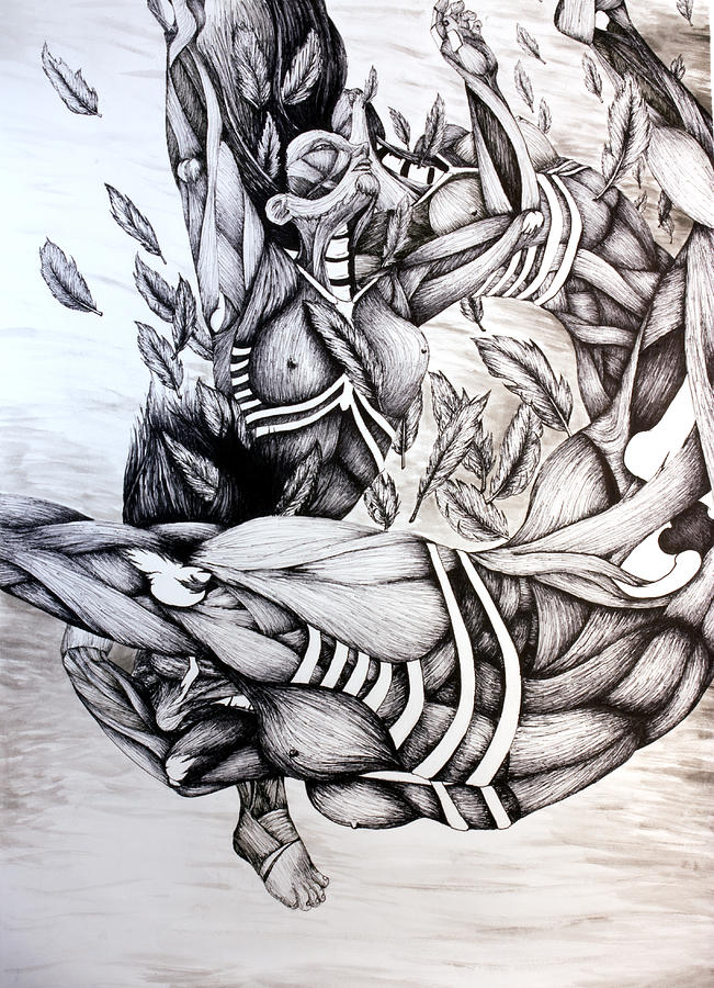 Icarus Drawing - Icarus by Amy Fix
