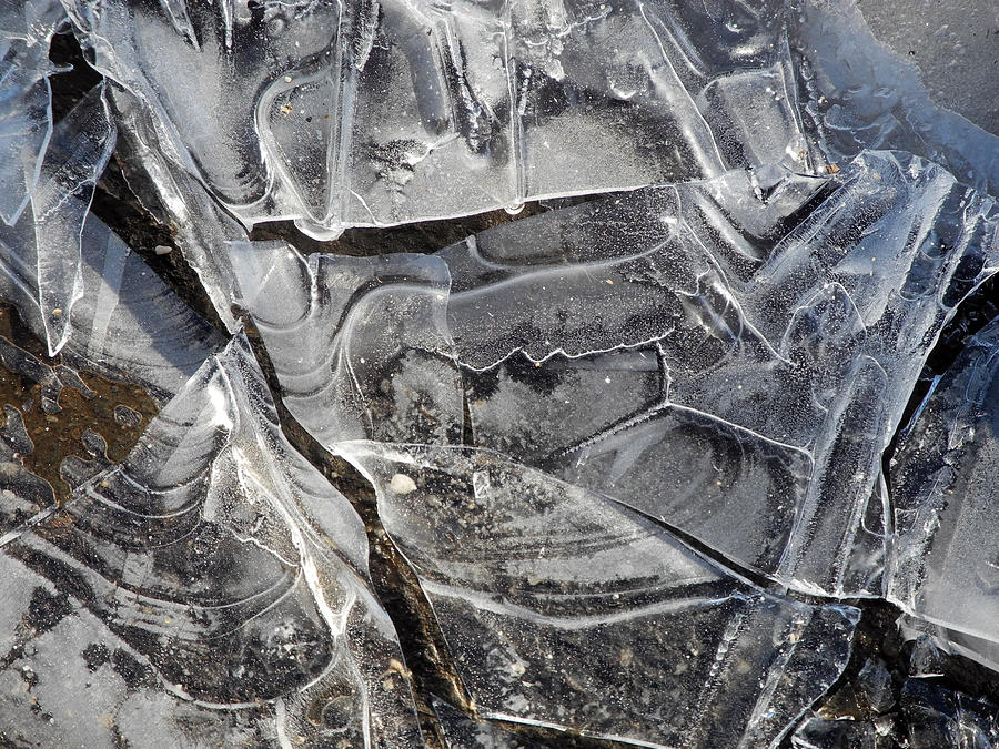 Ice Photograph - Ice Abstract by Lynda Lehmann