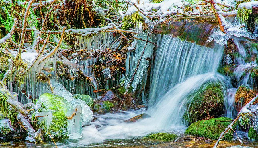 Nature Photograph - Ice along the Creek by Jason Brooks