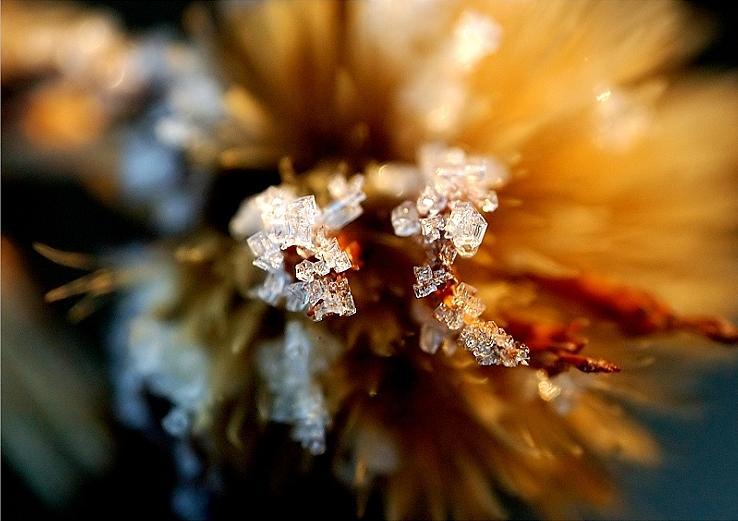 Ice Bolts Photograph by Andrei Constantin Visan Preda