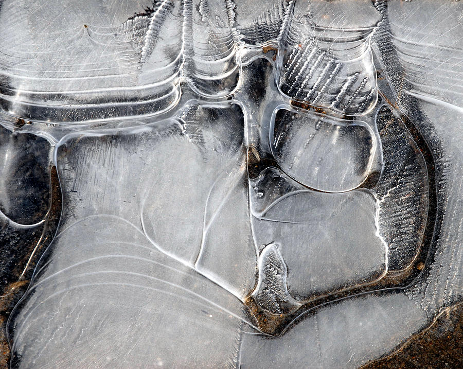 Ice Photograph - Ice Crystals by John Terwilliger