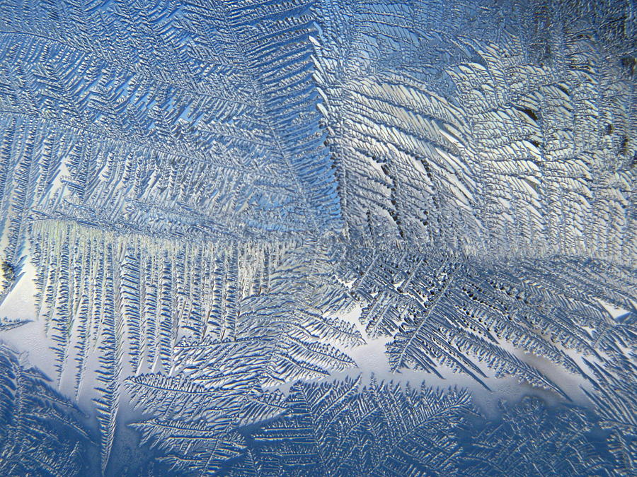 Ice Photograph - Ice Galore by Rhonda Barrett
