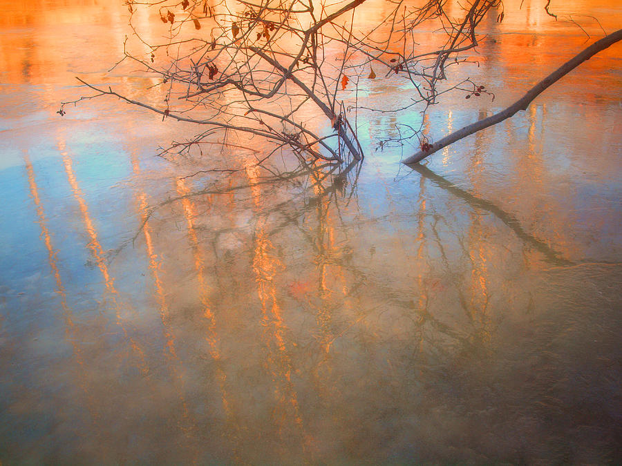 Ice Photograph - Ice Reflections 2 by Tara Turner