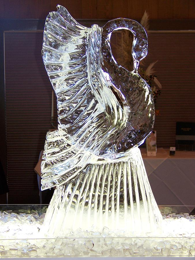 Ice Carving Sculpture - Ice Sculpture by Barry Combess