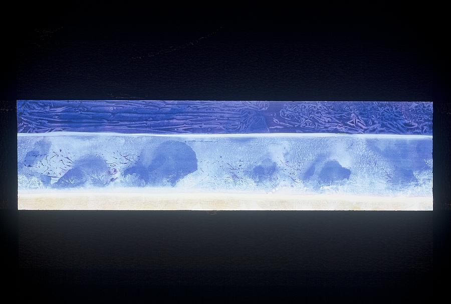 Acrylic Painting - Ice Shadows by Bonnie Carter