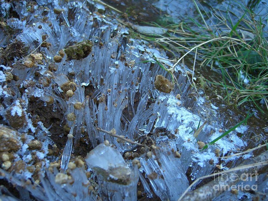 Ice Photograph - Ice Shards by Jim Thomson