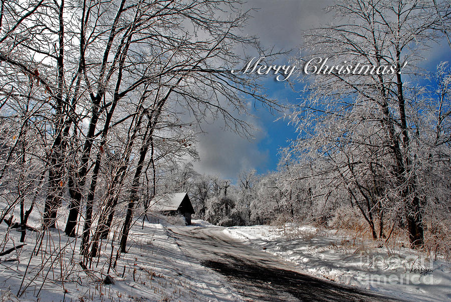 Christmas Photograph - Ice Storm Christmas Card by Lois Bryan