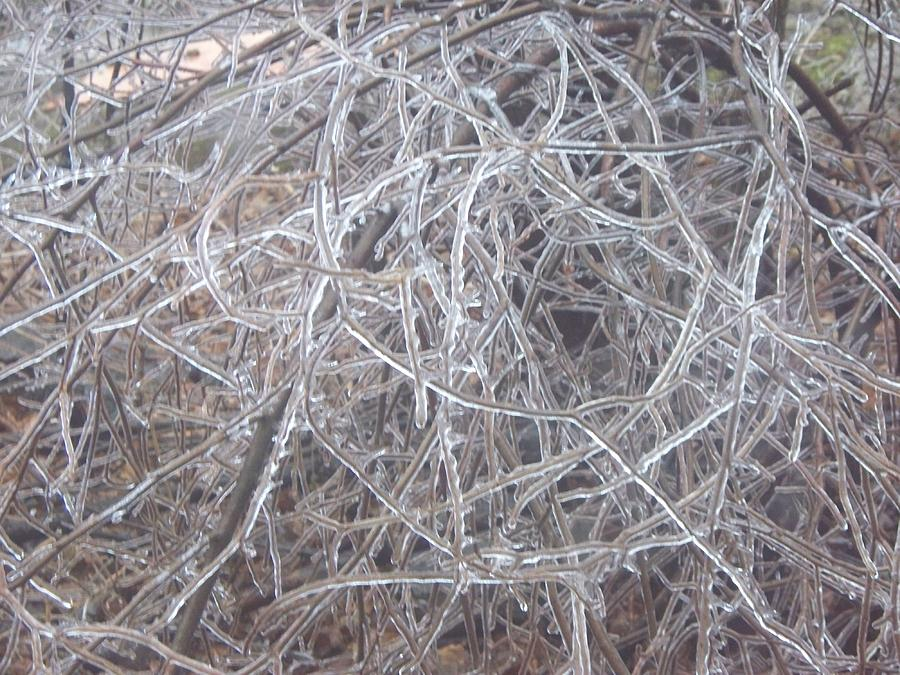 Ice Photograph - Ice Storm Effect by Rosanne Bartlett
