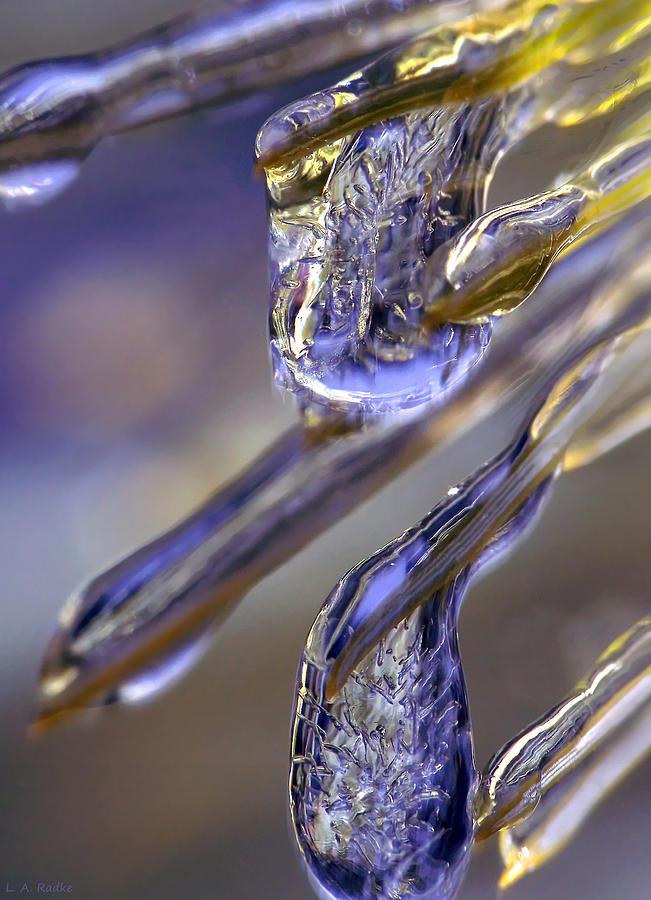 Macro Photograph - Ice Storm II by Lauren Radke