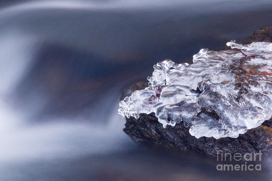 Water Photograph - Ice Water by Mel Petrey