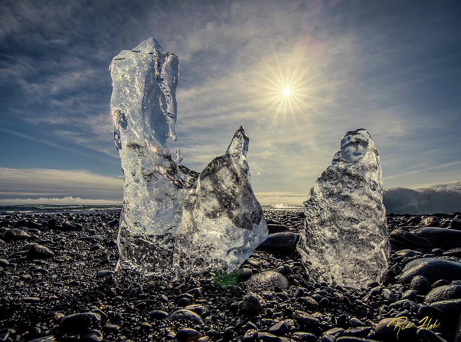 Iceberg Fingers catching the sun by Rikk Flohr