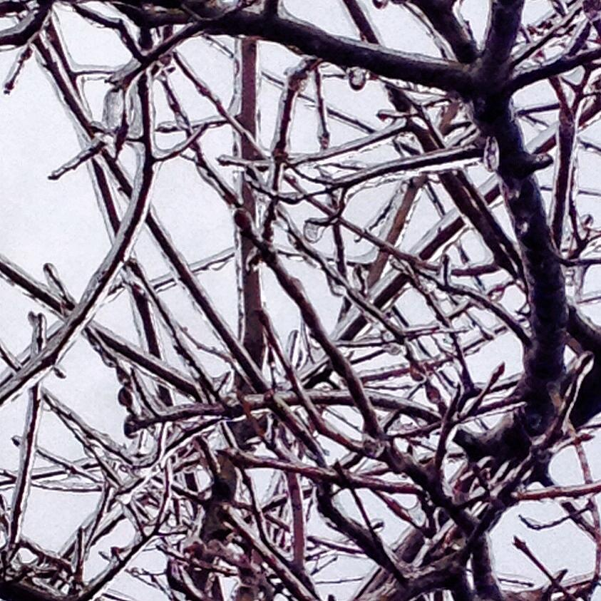 Iced Over Photograph by Kandi Neussendorfer