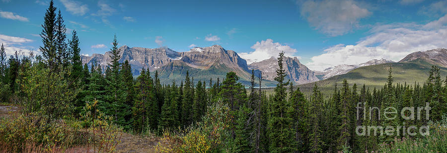 Icefields Parkway Vista by Patricia Gould