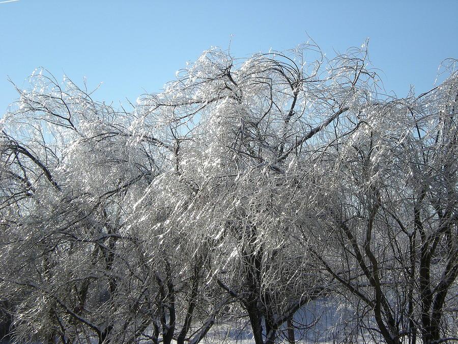 Winter Photograph - Icestorm by Shigeo Akiyama