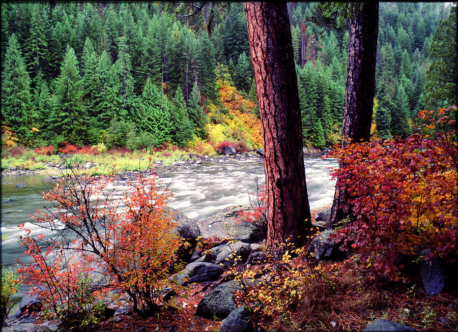 Northwest Pyrography - Icicle Creek by Bob Groshart