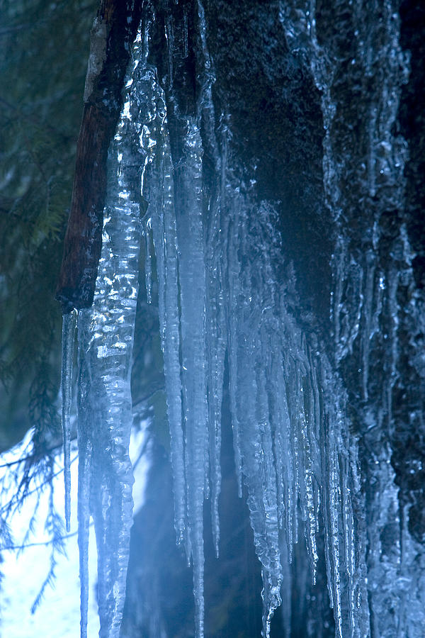 Icicles  5 Photograph by John Higby
