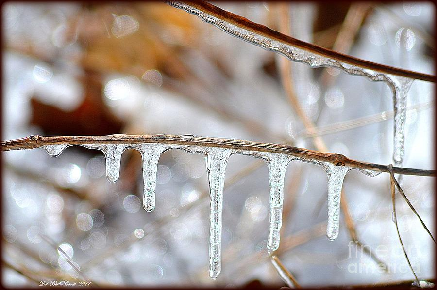 Icicles Photograph - Icicles And Bokeh by Deb Badt-Covell