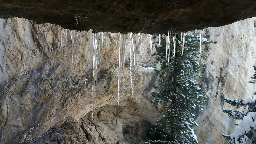 Icicle Photograph - Icicles by Jonathan Barnes