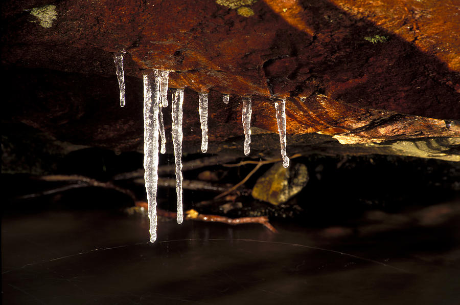 Ice Photograph - Icicles by Richard Steinberger