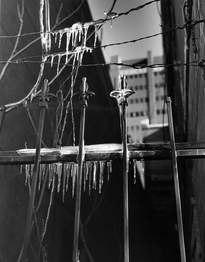 Wrought Iron Photograph - Icy Gates by Jim Furrer