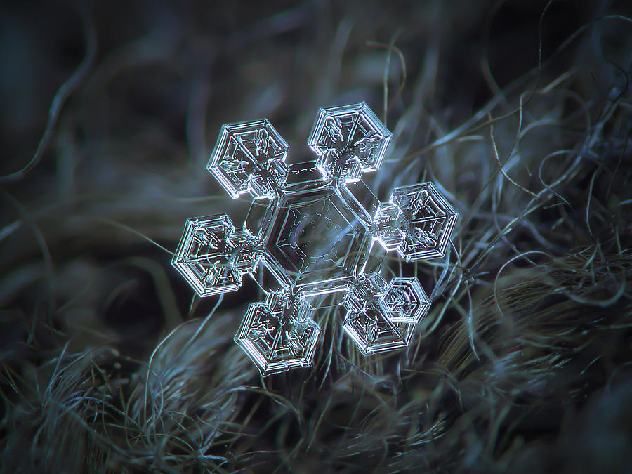 Icy jewel by Alexey Kljatov