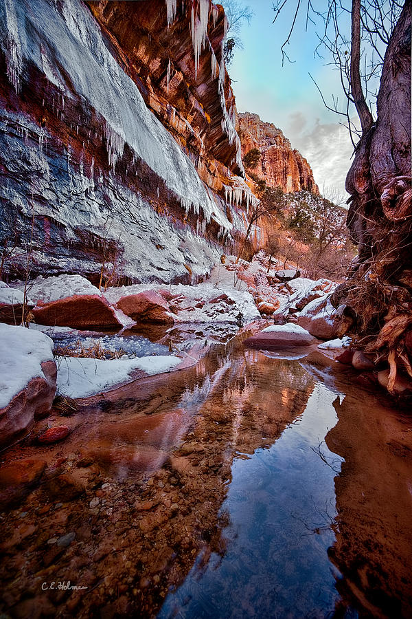 Ice Photograph - Icy Stillness by Christopher Holmes
