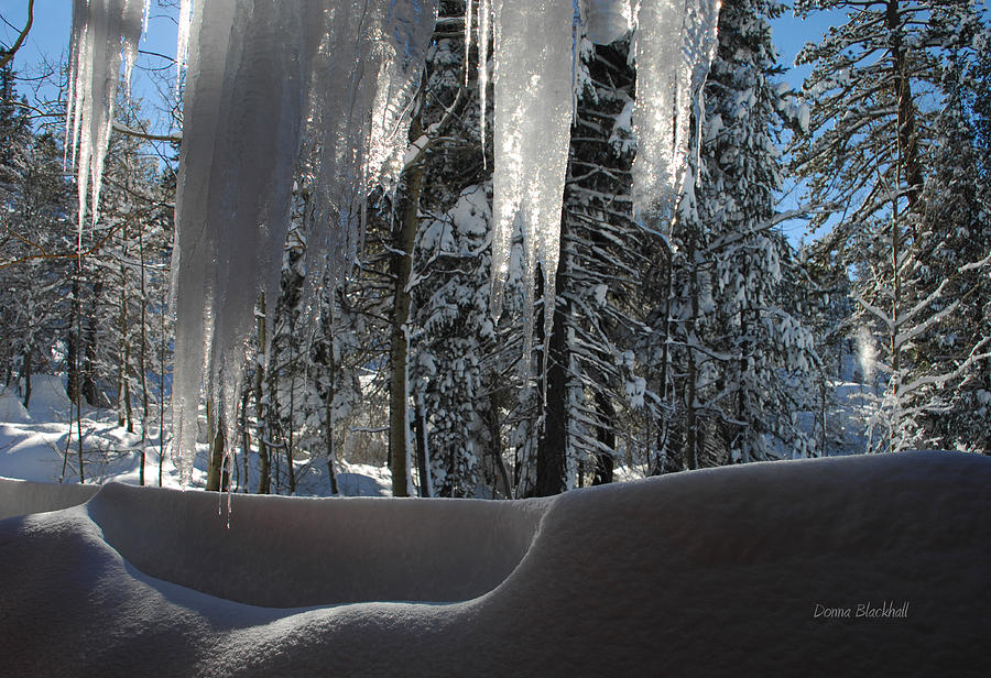 Ice Photograph - Icy Viewpoint by Donna Blackhall