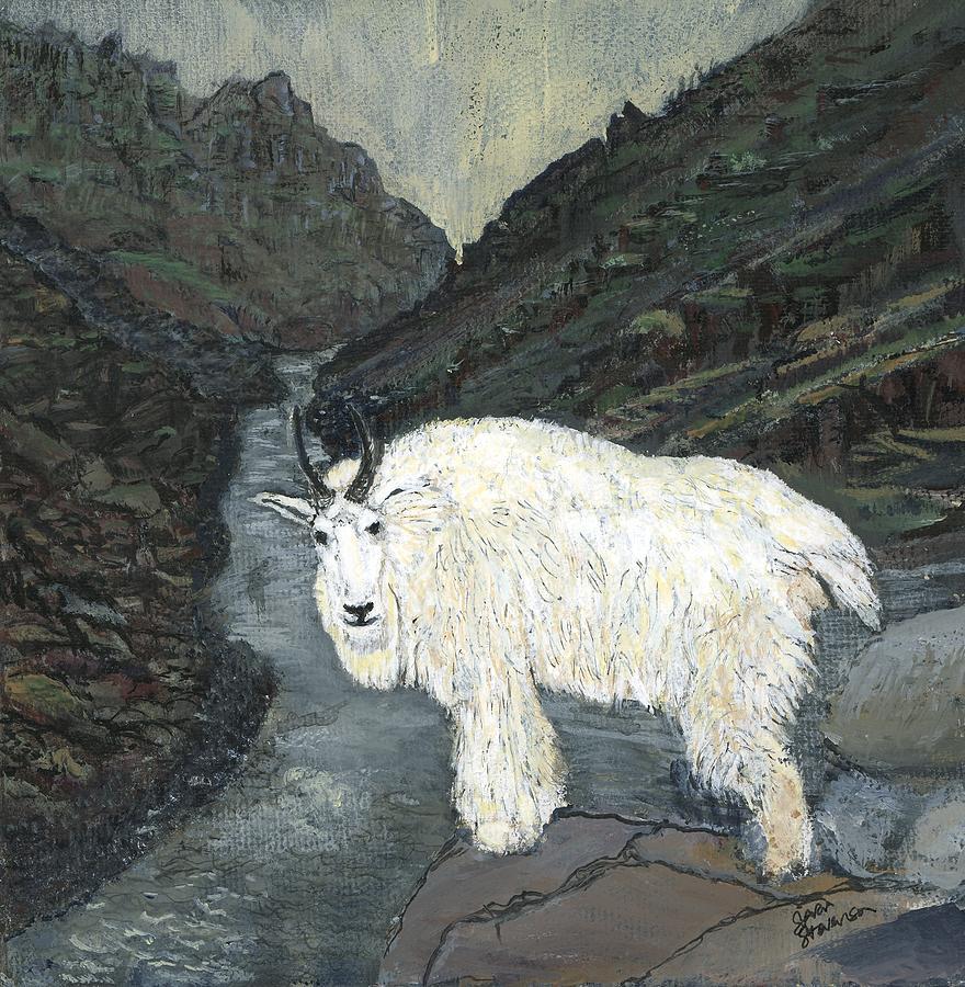 Idaho Painting - Idaho Mountain Goat by Sara Stevenson
