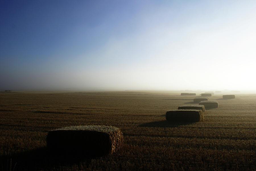 Farmland Photograph - Idaho Road Trip2 by Cynthia Powell