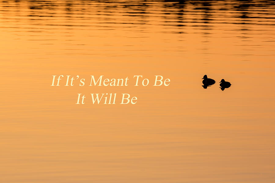 If Its Meant To Be It Will Be Photograph By Bill Wakeley