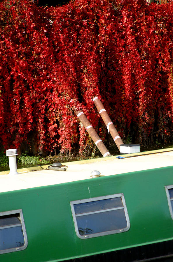 Photographer Photograph - If Only It All Looked Like This by Jez C Self